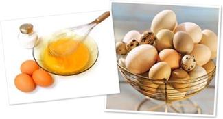 View Eggs